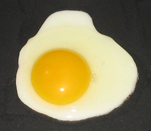 fried_egg__sunny_side_up
